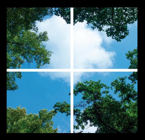 Led Wolkenplafond 4-Wolk-Bos - 5235-sll-wolk-4b