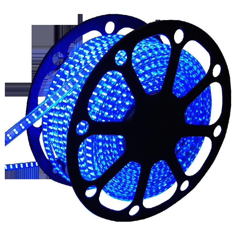 8134-sll-strip-5050-220volt 50m blauw