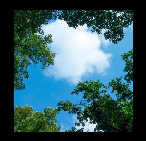 Led Wolkenplafond 1 stuk Wolk-Bos - 5228-sll wolkenplafond