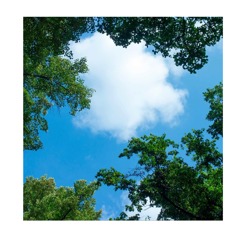 5228-sll wolkenplafond